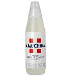 AMUCHINA 1000ML